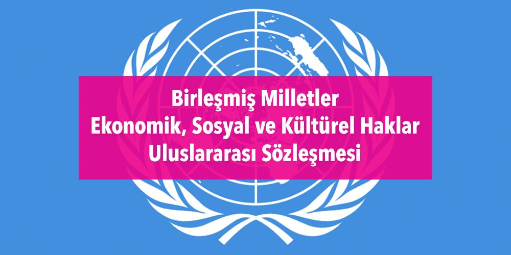 BM Ekonomik, Sosyal ve Kültürel Haklar Uluslararası Sözleşmesi Görsel